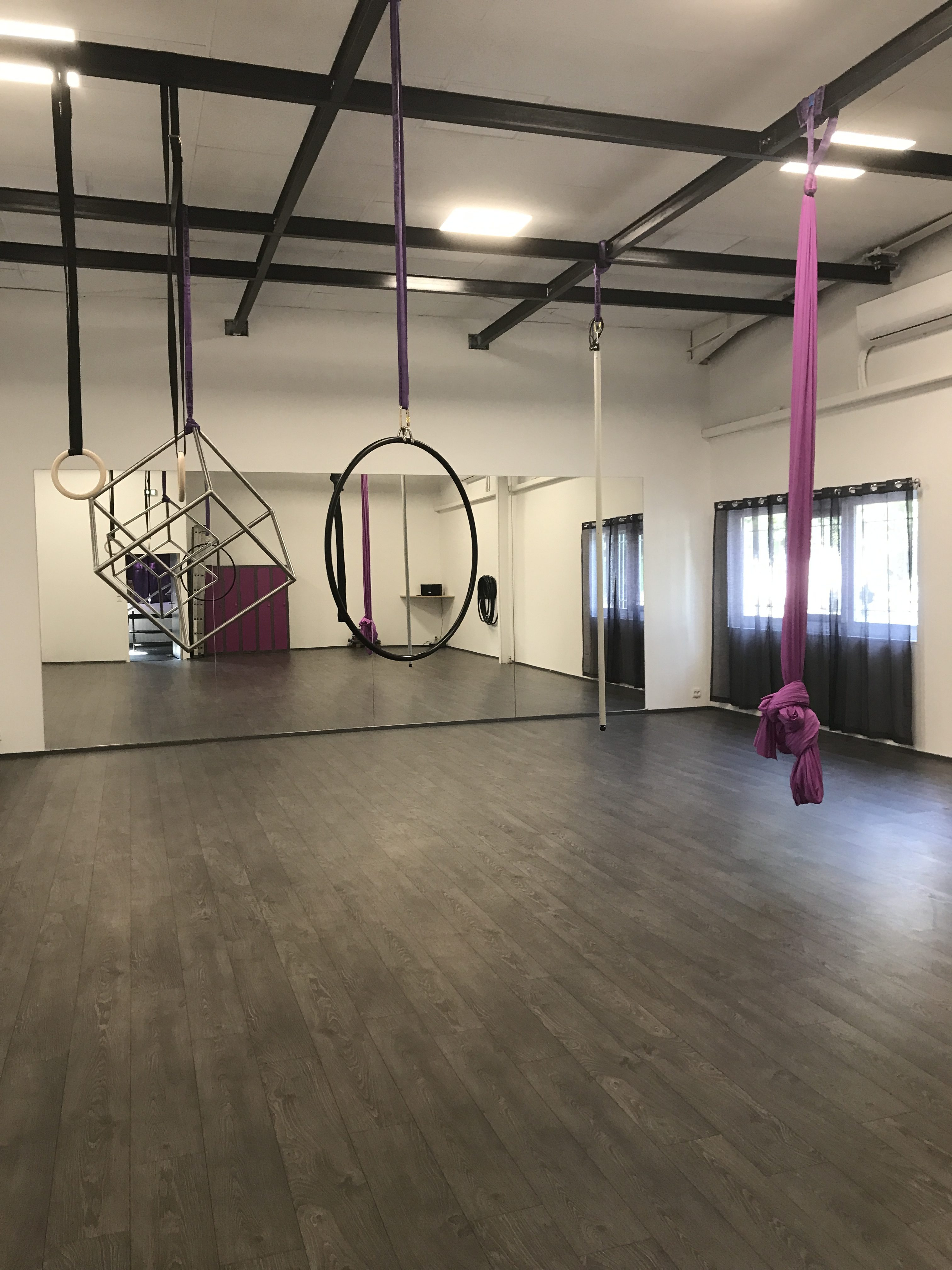 Pole dance et sports aériens à Grenoble (Poisat)