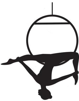Pole dance et sports aériens à Grenoble Poisat